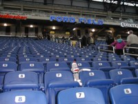 sock monkey inside Ford Field