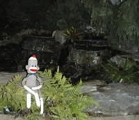 sock monkey at pond
